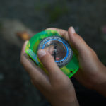 Youngsters learn compass basics at Pilot Mountain State Park